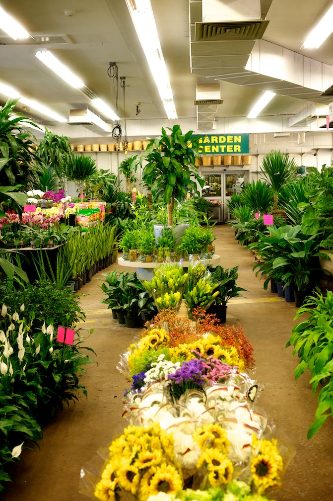 garden centers nj. Welcome To Metropolitan Wholesale Garden Center, Serving New Jersey And NYC\u0027s Gardening Needs Season By Season. Centers Nj ,