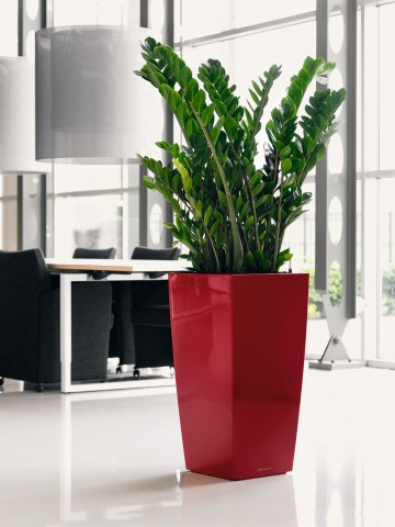 Lechuza Cubico Scarlet Red High gloss Self Watering Planter
