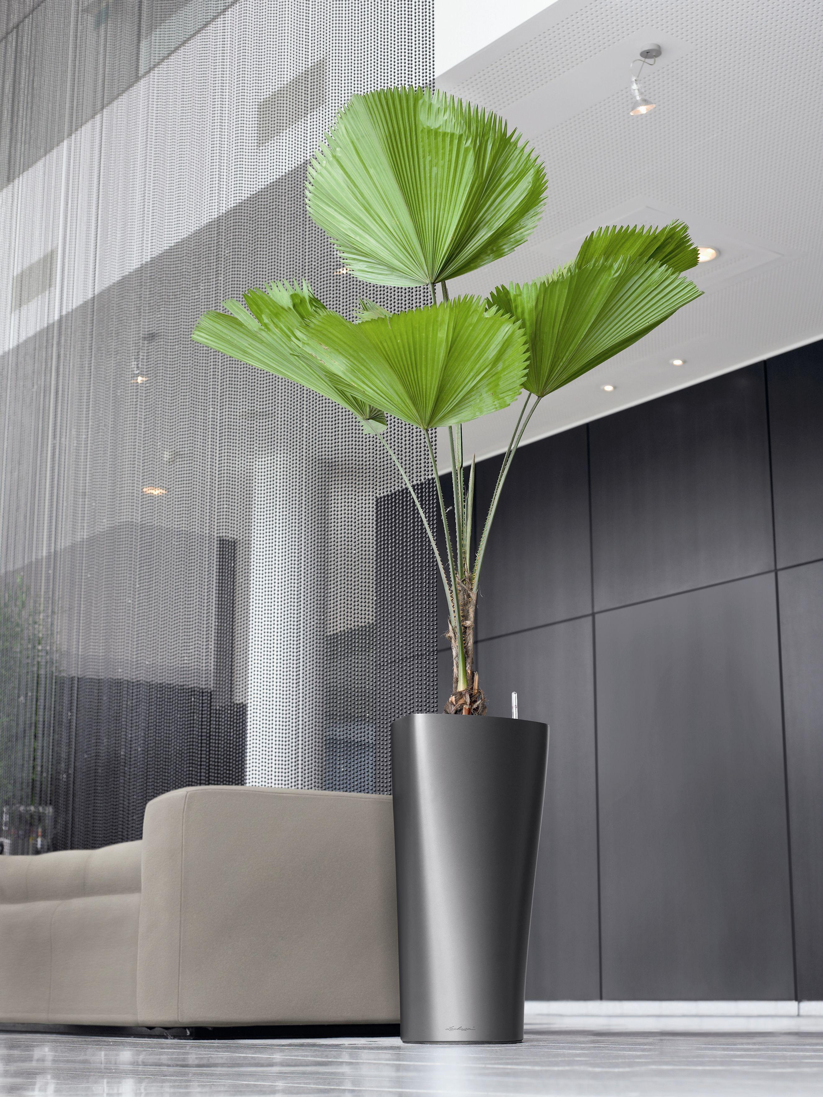 lechuza delta self watering planter metropolitan wholesale metropolitan wholesale. Black Bedroom Furniture Sets. Home Design Ideas