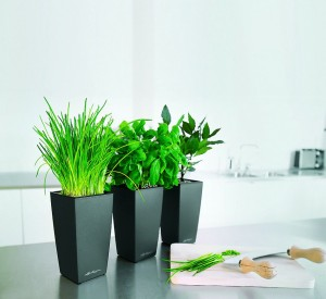 Lechuza Mini Cubi Charcoal Metallic Self Watering Table Top Planter
