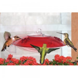 Window Mount Hummingbird Feeder