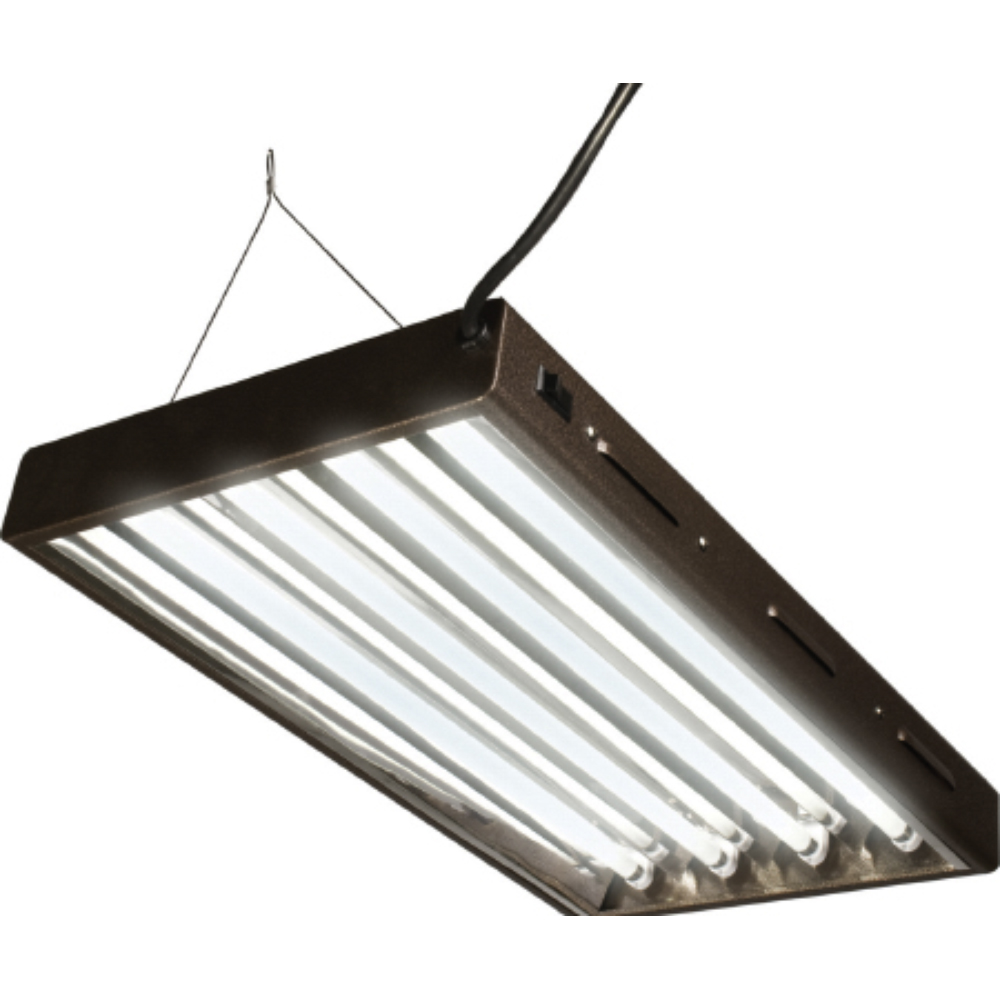 Designer Light System with 4-T5 Bulb