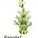 Lucky Bamboo Pagoda Curl