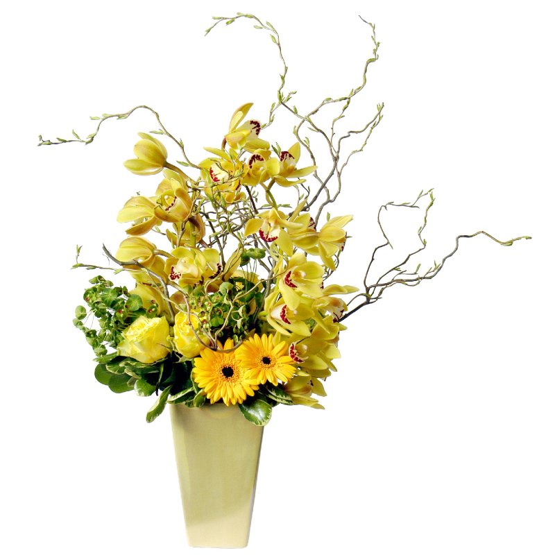 Cut Flower Care Instructions Metropolitan Wholesale Metropolitan