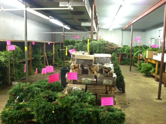 Wreaths, Cut Trees, Noble Fir, Roping, Christmas Greens